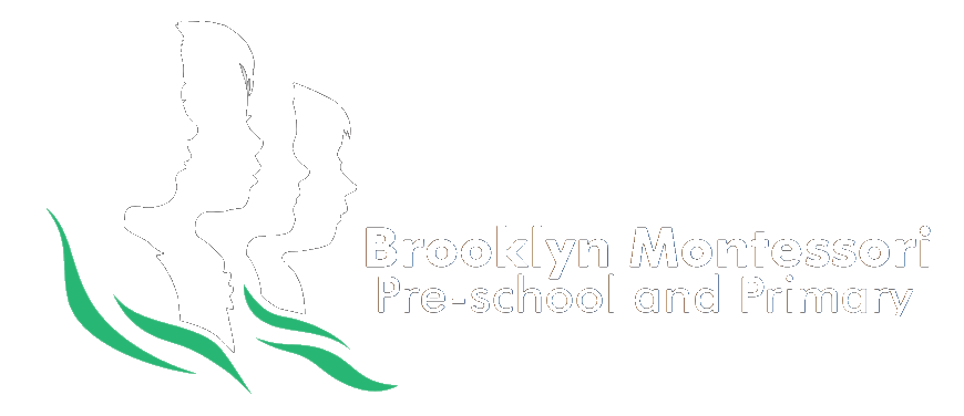 Brooklyn Montessori