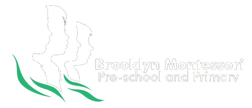 Brooklyn Montessori